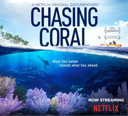 Chasing Coral - Netflix  Documentary about the disappearance of natural reefs